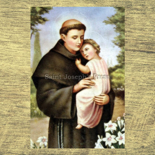"St. Anthony of Padua 4"" x 6"" Print"